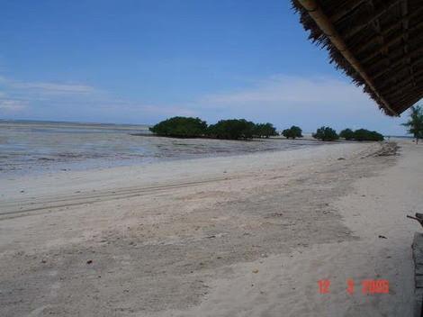PEMBA -  baixa mar na praia do Wimbe_resize.jpg