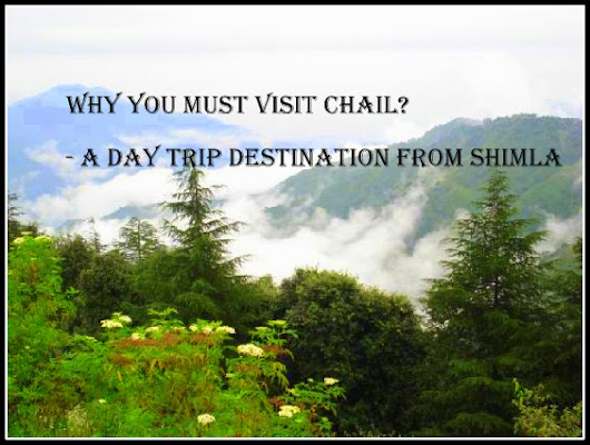 Why you must visit Chail? – A Day trip destination from Shimla