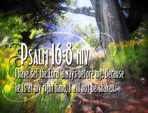 [Photo of a lush forest with a Scripture verse superimposed]