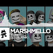 Marshmello - Alone (The Remixes) - YouTube