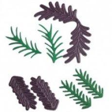 http://www.scrappasja.pl/galerie/w/wykrojniki-b146-pine-bra_4628_k.jpg