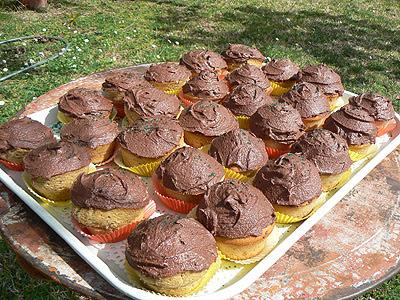 irish cupcakes.jpg