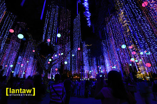 Ayala Lights 12