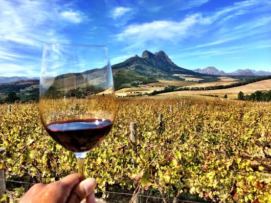 Things to do in Stellenbosch, an historic town in South Africa