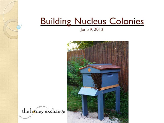 Building Nucleus Colonies June 9, 2012