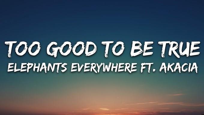 Elephants Everywhere - Too Good To Be True (Lyrics) ft. AKACIA