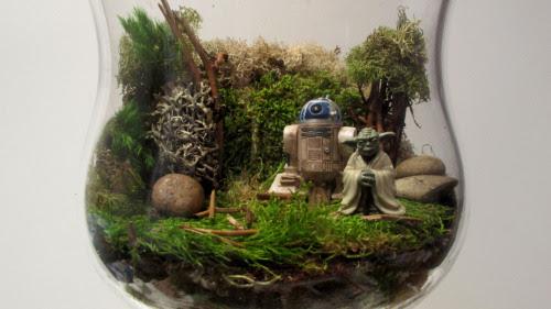 DIY Star Wars Terrarium Thanksgiving Centerpiece