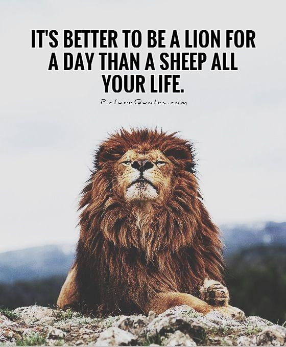 It S Better To Be A Lion For A Day Than A Sheep All Your Life
