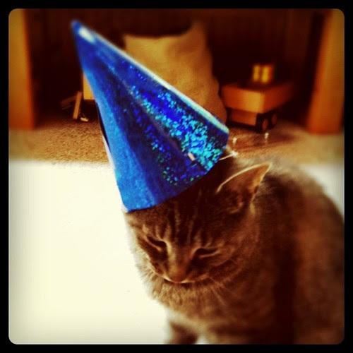 hickory's 8th birthday