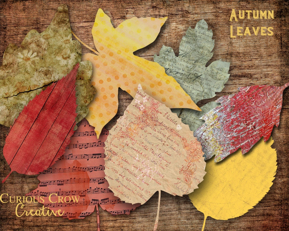Autumn Leaves Digital Collage Sheets - Fall Color 3 Inch Leaves Printable Download - CuriousCrowCreative