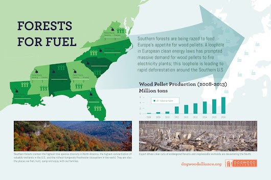 Dogwood Alliance   –  See How Our Forests Fuel Europe