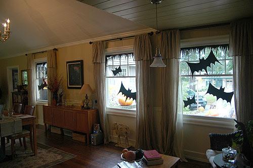 bats in windows