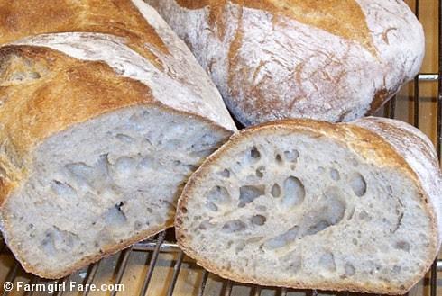 Freshly Baked Pain au Levain - Farmgirl Fare