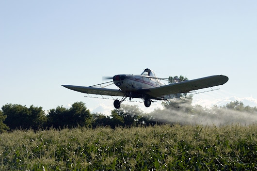 Study: Reducing Herbicide Glyphosate in Diet Reduces Autism Symptoms