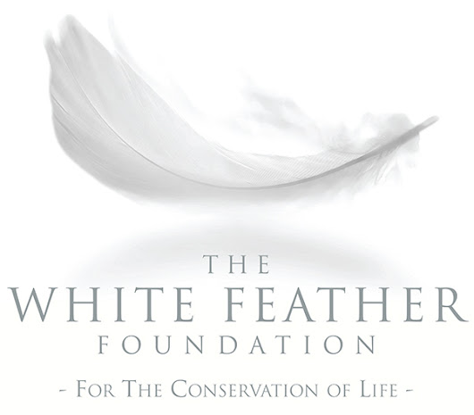 Mission for the Conservation of Life - The White Feather Foundation