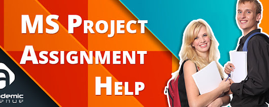 MS Project Assignment Help