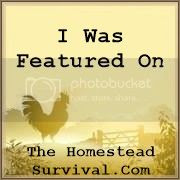 The Homestead Survival