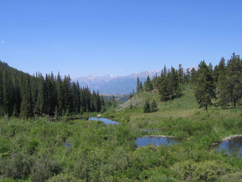 View from Duane's cabin near Leadville Colorado