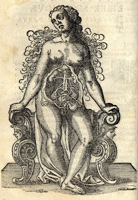 pregnant woman anatomical woodcut - Rueff 1580