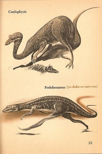 coelophysis_podokesaurus