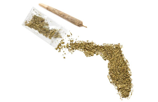 What Is The Right of Adults To Cannabis? | Florida's Proposal 700000