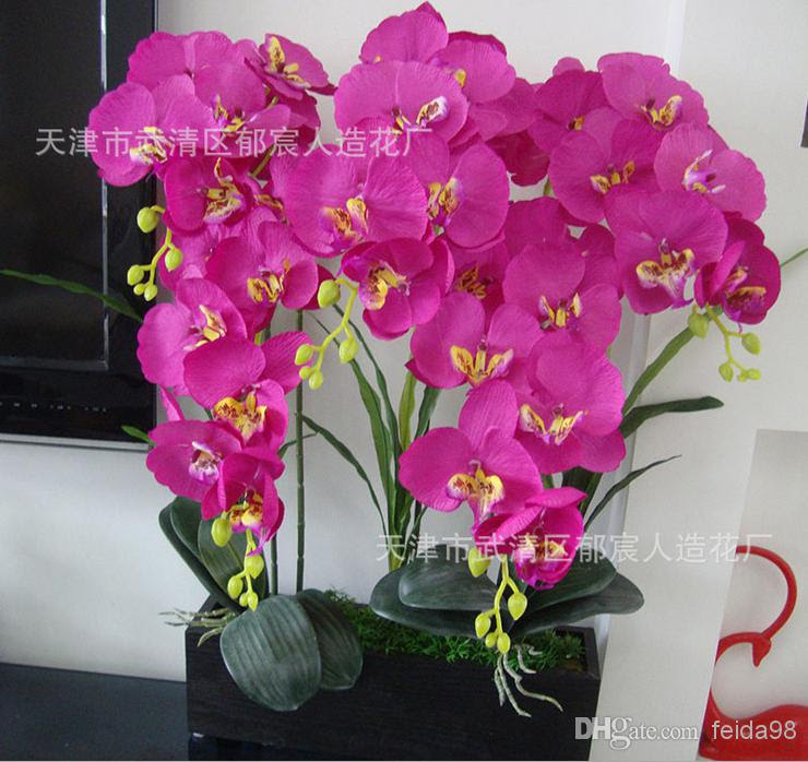 2017 Wholesale Natural Phalaenopsis Silk Flower Artificial