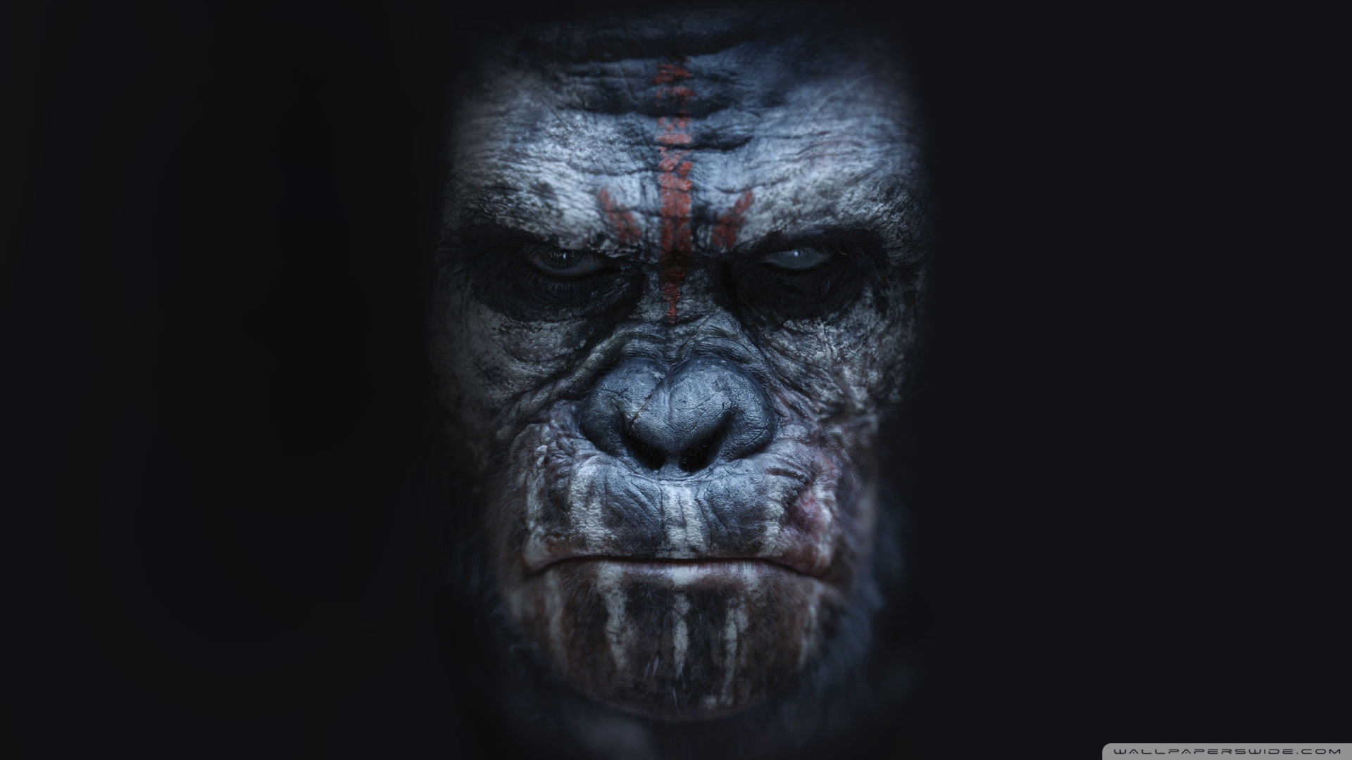 Dawn Of The Planet Of The Apes Koba Ultra Hd Desktop Background