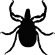 Lyme Disease Awareness | ABD Promotions