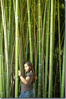 71 bambus in Sonja