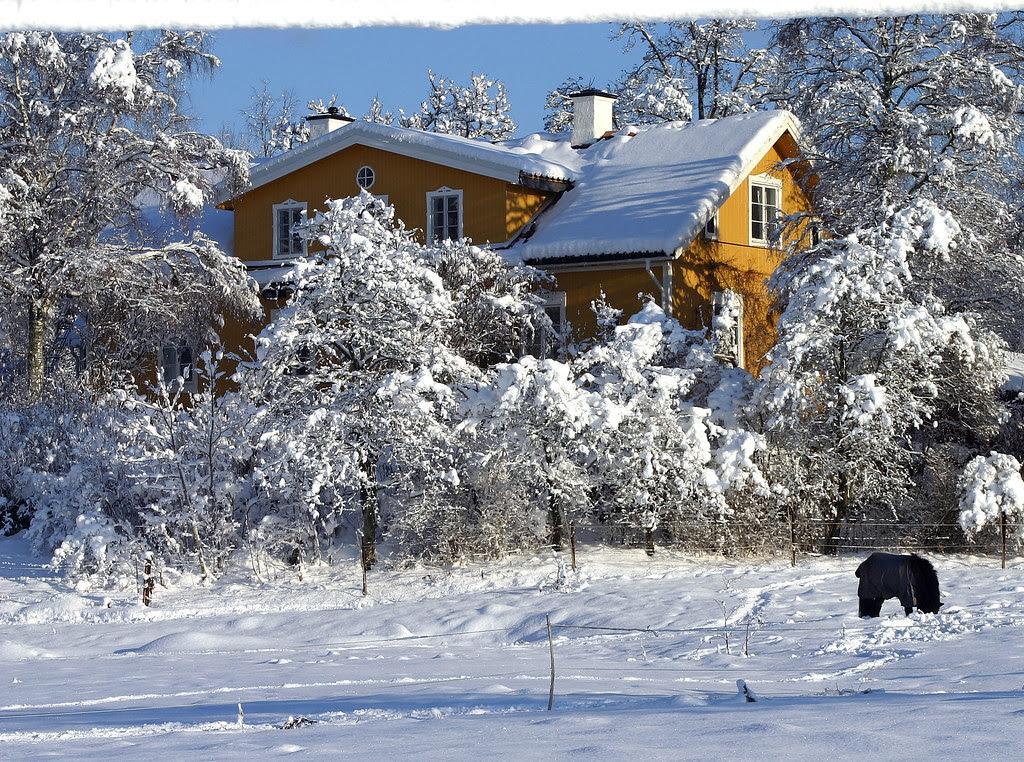 Winter at Mulsta