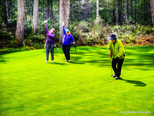 Happy National Golf Day! - Alderbrook Golf Course