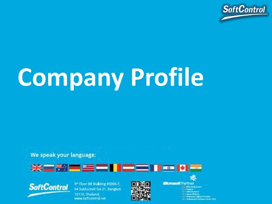 SoftControl.net - business profile