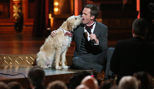 Neil Patrick Harris Hosted the Tonys for Fourth Time - NYTimes.com