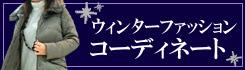 h22_winter2_bana.jpg