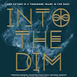 Review ~ Into the Dim by Janet B. Taylor         |          Anatea's Bookshelf
