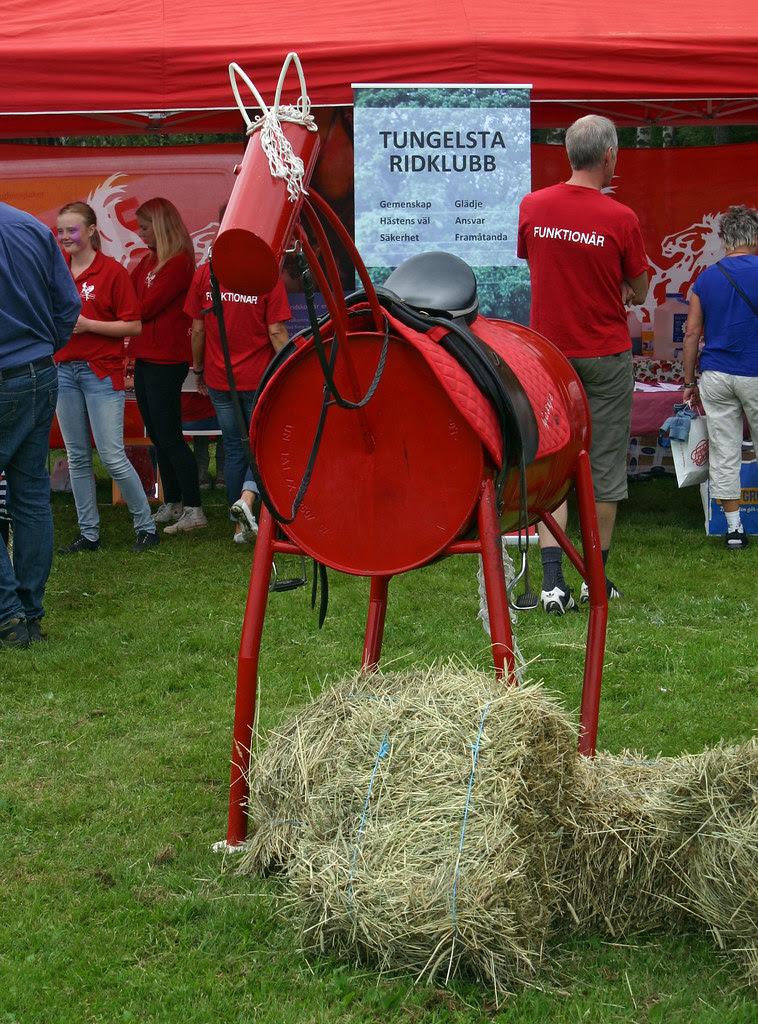 Horse & Hay