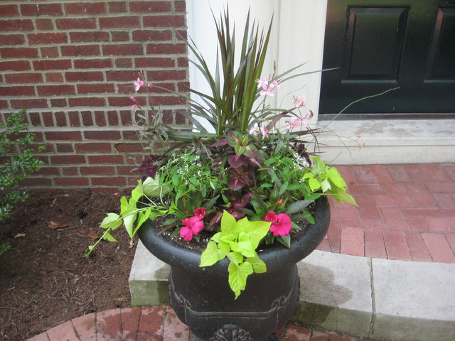 Clayton Entryway - traditional - outdoor planters - st louis - by ...