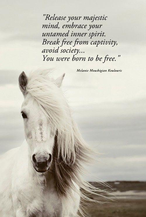 Free Spirit Image Quotation 3 Sualci Quotes