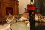 ワイン・イエローテール赤