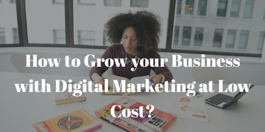 How to Grow your Business with Digital Marketing at Low Cost? | E Digital marketing