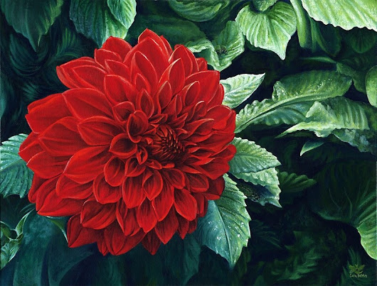 'Large Red Dahlia Flower, painting'  by CaraBevan