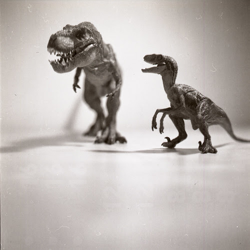 dusty dinosaurs