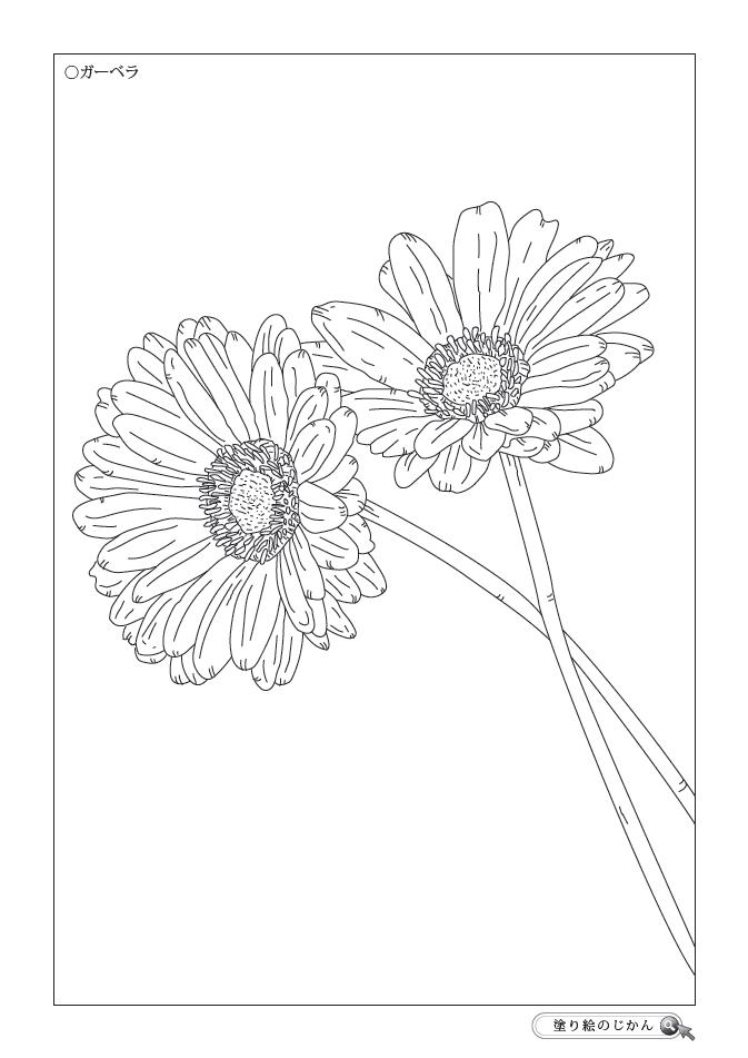 春の花ぬりえ 塗り絵のじかん