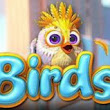 Play Now Birds! - LUCK.info