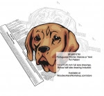 Portuguese Pointer Dog Intarsia or Yard Art Woodworking Pattern - fee plans from WoodworkersWorkshop® Online Store - Portuguese Pointer Dog,pets,animals,dog breeds,yard art,painting wood crafts,scrollsawing patterns,drawings,plywood,plywoodworking plans,woodworkers projects,workshop blueprints