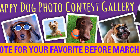 Happy Howie's Happy Dog Photo Contest.