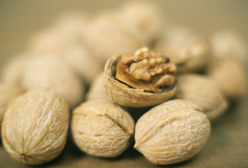 Walnuts. A Rich History To Match Their Taste and Nutrition | Doug Cook