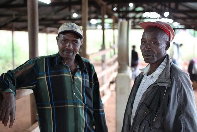 Two farmers at Kieni