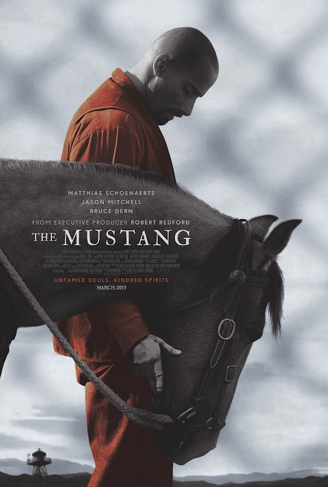 The Mustang (2019) 480p 720p 1080p BluRay Dual Audio (Hindi+English) Full Movie