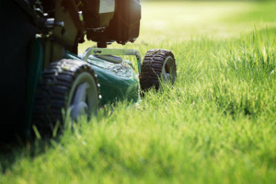 Lawn Mowers – How to Choose the One That Is Right for You | Yard & Nursery Depot